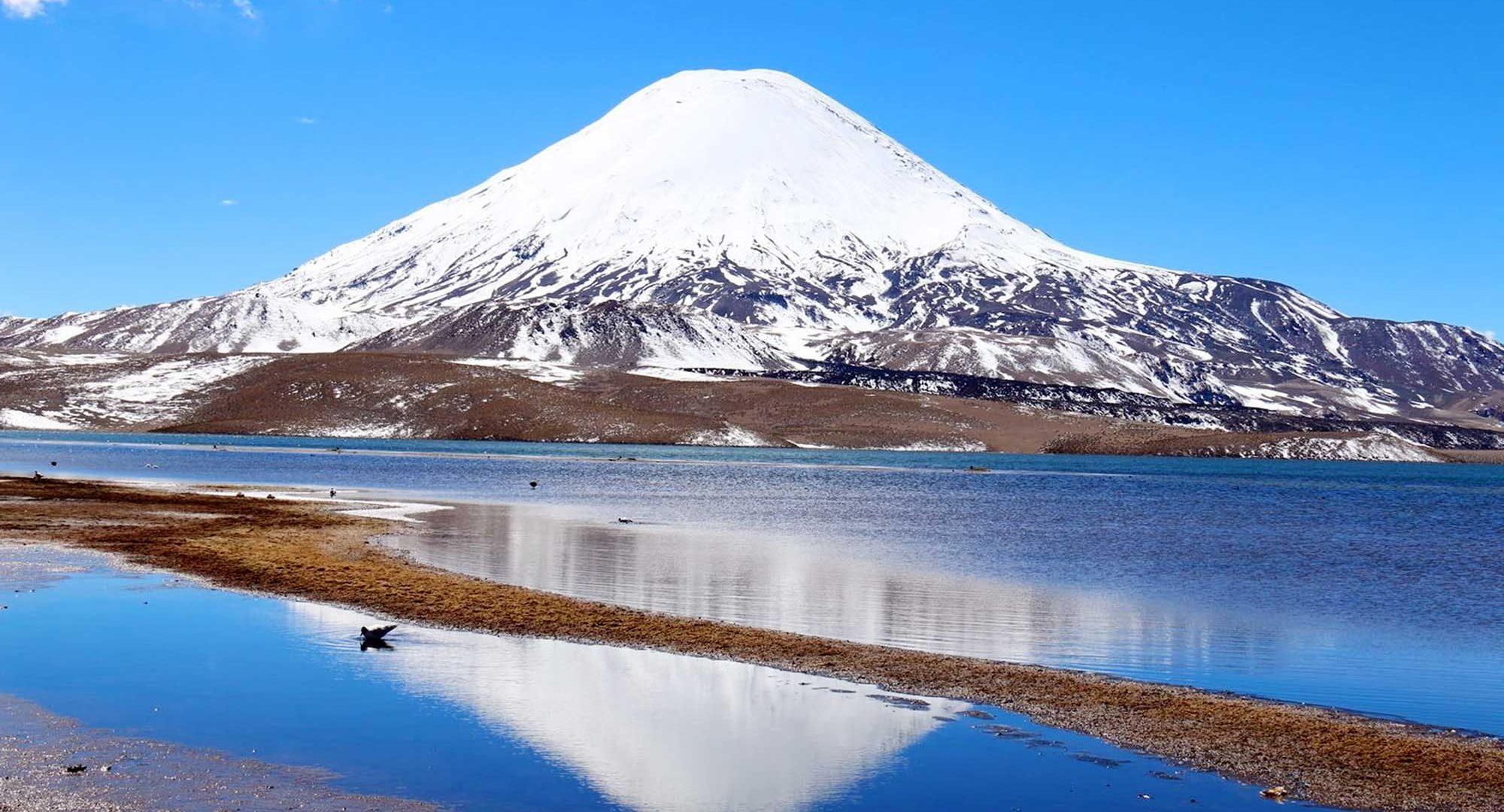 Volcan-Parinacota